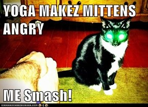 YOGA MAKEZ MITTENS ANGRY  ME Smash!