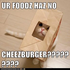 UR FOODZ HAZ NO  CHEEZBURGER?????????