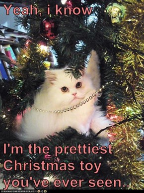 Yeah, i know  I'm the prettiest Christmas toy you've ever seen..