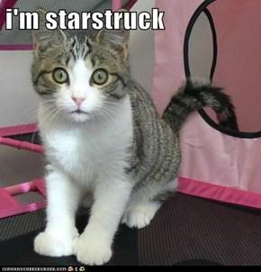 i'm starstruck