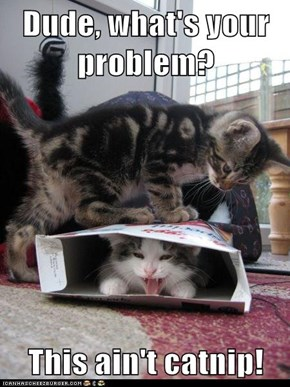 Dude, what's your problem?  This ain't catnip!