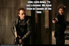 John, Calm Down