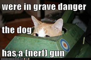 were in grave danger the dog has a (nerf) gun
