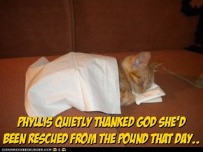 Finally rescued..