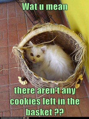 Wat u mean  there aren't any cookies left in the basket ??