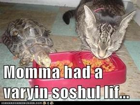 Momma had a varyin soshul lif...