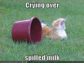 Crying ovee