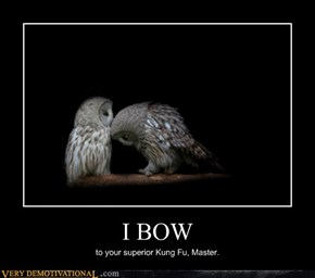 I BOW