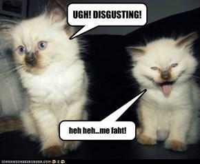 UGH! DISGUSTING!