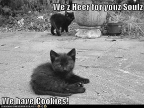 We'z Heer for youz Soulz  We have Cookies!