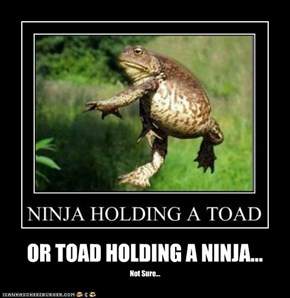 OR TOAD HOLDING A NINJA...