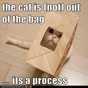 the cat is (not) out of the bag  .... its a process