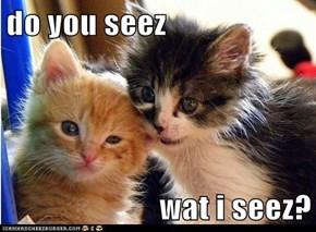 do you seez  wat i seez?