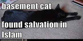 basement cat  found salvation in Islam