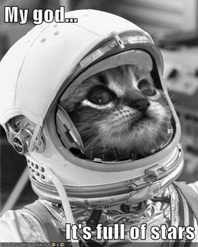 Astronaut Kitteh Still Awed by Space