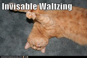 Invisable Waltzing