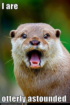I are  otterly astounded