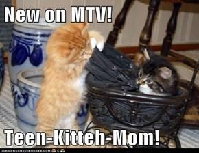New on MTV!  Teen-Kitteh-Mom!