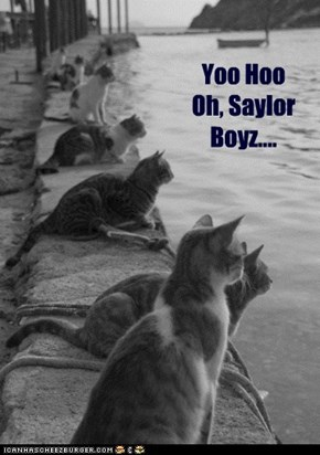 Fleet Week, Kitteh Style
