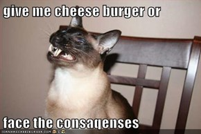 give me cheese burger or  face the consaqenses
