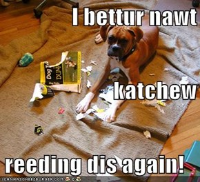 i bettur nawt katchew reeding dis again!
