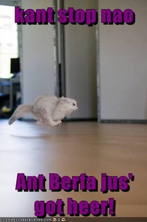 kant stop nao  Ant Berfa jus' got heer!