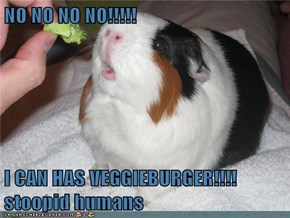 NO NO NO NO!!!!!  I CAN HAS VEGGIEBURGER!!!! stoopid humans