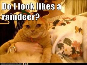 Do I look likes a raindeer?