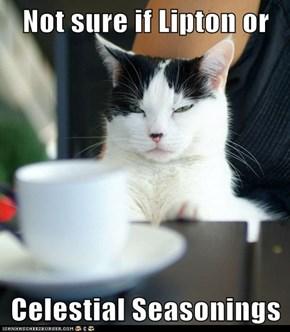 Not sure if Lipton or  Celestial Seasonings