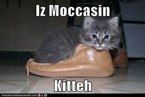 Iz Moccasin  Kitteh