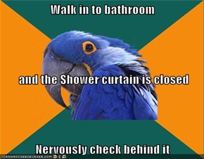 Walk in to bathroom  and the Shower curtain is closed Nervously check behind it