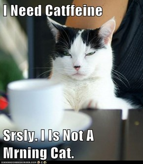 I Need Catffeine  Srsly. I Is Not A Mrning Cat.
