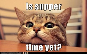 is supper  time yet?