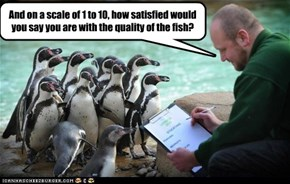 And on a scale of 1 to 10, how satisfied would you say you are with the quality of the fish?