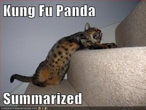 Kung Fu Panda  Summarized