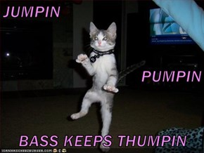 JUMPIN PUMPIN BASS KEEPS THUMPIN
