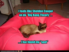 "I feels like Sheldon Cooper on da ""Big Bang Theory""...."