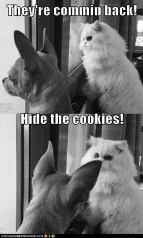 They're commin back! Hide the cookies!