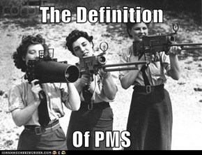 The Definition  Of PMS