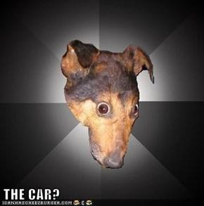 THE CAR?