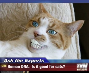 Ask the Experts - Human DNA.  Is it good for cats?