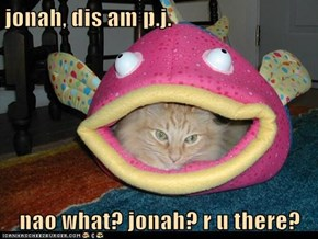 jonah, dis am p.j.  nao what? jonah? r u there?