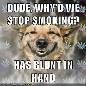 DUDE, WHY'D WE STOP SMOKING?  HAS BLUNT IN HAND