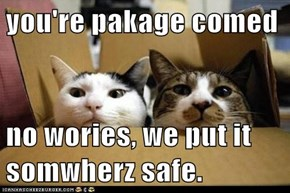 you're pakage comed  no wories, we put it somwherz safe.