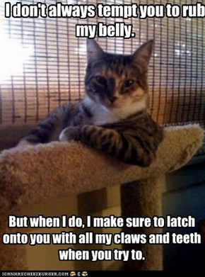Animal Memes: The Most interesting Cat in the World - It's a Trap!