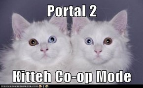 Portal 2  Kitteh Co-op Mode