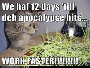 We haf 12 days 'till deh apocalypse hits...  WORK FASTER!!!!!!!!!