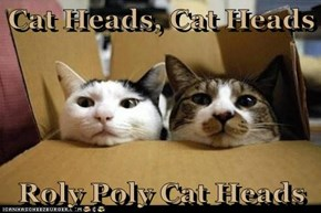 Cat Heads, Cat Heads  Roly Poly Cat Heads