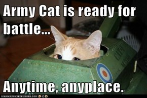 Army Cat is ready for battle...  Anytime, anyplace.