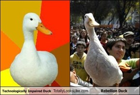 Technologically Impaired Duck Totally Looks Like Rebellion Duck